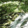 西岡公園 – 自然豊かな特殊公園